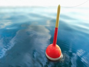 Fishing Bobber on Calm Water